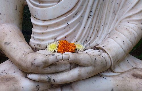 buddhahands